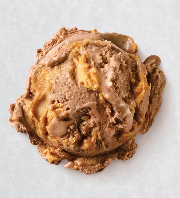 Peanut Butter Chip Ice Cream
